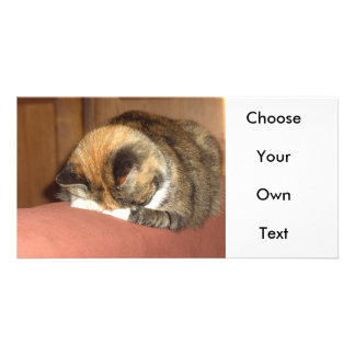 Cat 'Red' sleeping on the cough Photo Card Template
