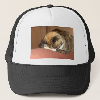 Cat 'Red' sleeping on the cough Trucker Hat