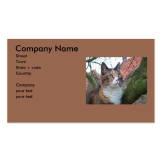 Cat 'Red' with big eyes Double-Sided Standard Business Cards (Pack Of 100)