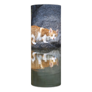Cat Reflection in Pond Water, LED Wrapped Flameless Candle