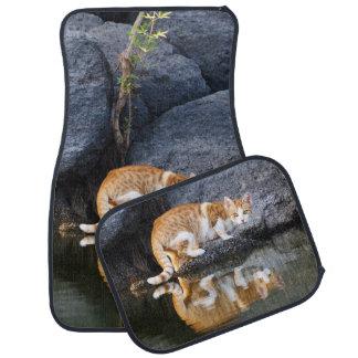 Cat Reflection in Pond Water Photo, floor-mats Car Floor Mat