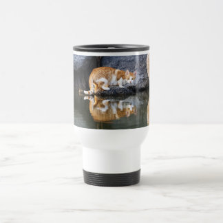 Cat Reflection Pond Water, Animal Photo Thermo Cup