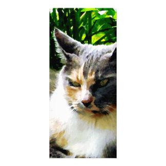 Cat Relaxing in Garden Rack Card