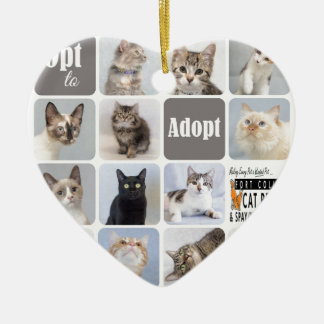 Cat Rescue Fort Collins Cat Rescue Ceramic Ornament