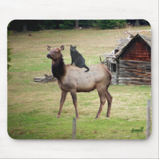 Cat riding Elk by cabin Mouse Pad