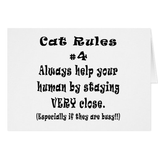 Cat Rules Number 4 Card