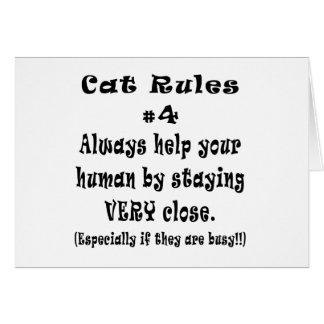 Cat Rules Number 4 Cards