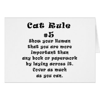 Cat Rules Number 5 Cards