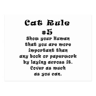 Cat Rules Number 5 Postcard