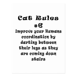 Cat Rules Number 6 Post Cards