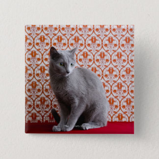 Cat (Russian blue) and wallpaper background Button