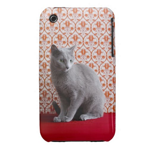 Cat (Russian blue) and wallpaper background iPhone 3 Covers