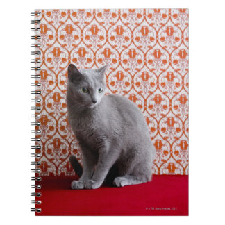 Cat (Russian blue) and wallpaper background Notebook
