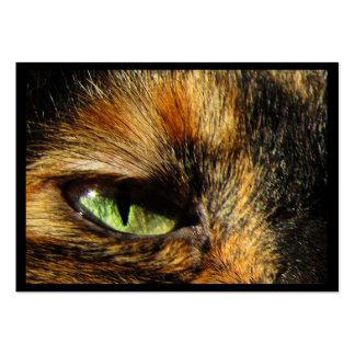 Cat s Eye ATC Business Cards