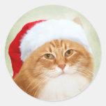 Cat Santa Claus Round Stickers
