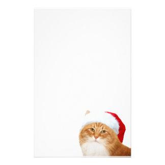 Cat Santa Claus Stationery