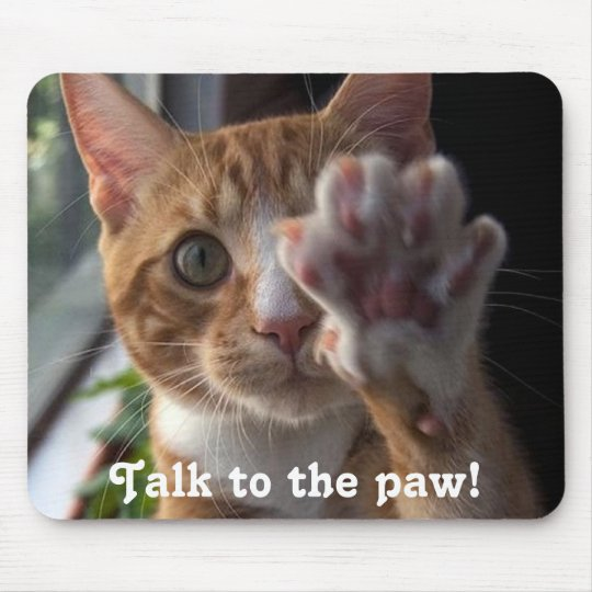 cat saying Talk to the paw! Mouse Pad