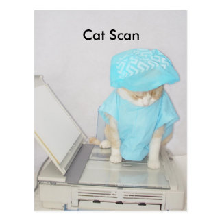 Cat Scan Postcard