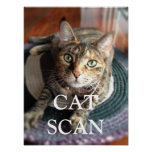 CAT SCAN POSTER