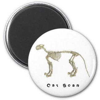 Cat Scan Skeleton Magnet