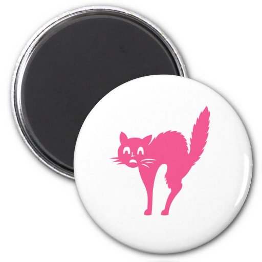 Cat Scared Refrigerator Magnets
