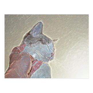 cat scratch under neck sparkle animal feline pet postcard