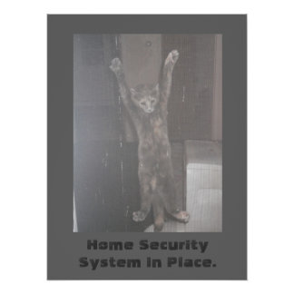 Cat Security Poster