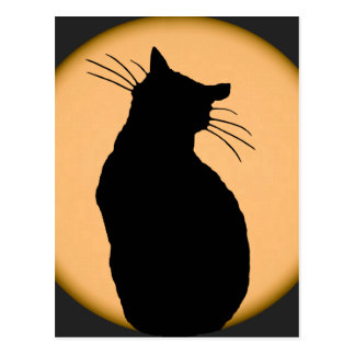 Cat Silhouetted Against the Rising Moon Postcard