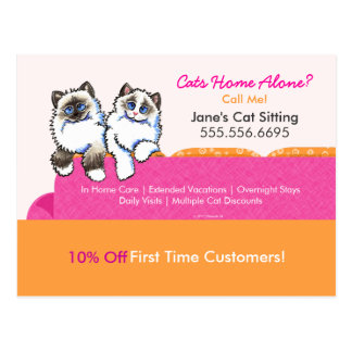Cat Sitter Coupon Mailer Ad Ragdoll Couch Pink Postcard