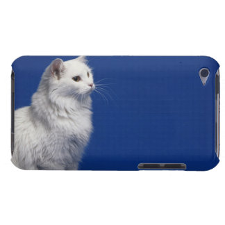 Cat sitting against blue background barely there iPod cases
