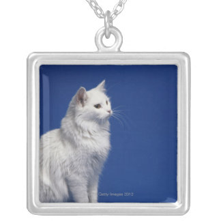 Cat sitting against blue background silver plated necklace