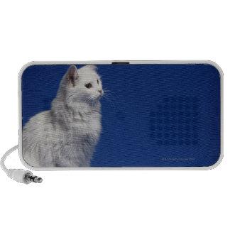 Cat sitting against blue background speaker system
