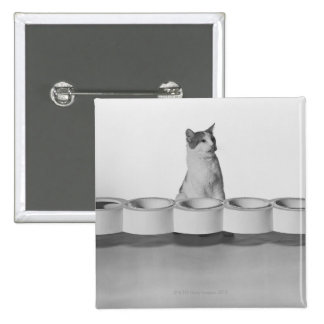 Cat sitting and licking beside pet bowl on white 2 inch square button