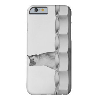 Cat sitting and licking beside pet bowl on white barely there iPhone 6 case