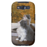 Cat sitting and looking up samsung galaxy SIII covers