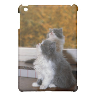 Cat sitting and looking up iPad mini cover