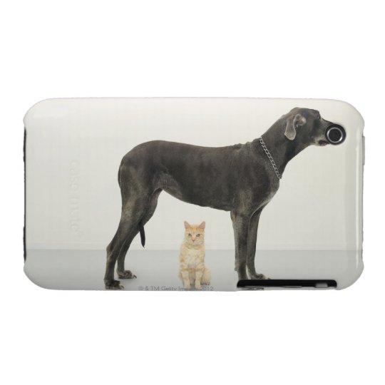 Cat sitting beneath Great Dane iPhone 3 Case