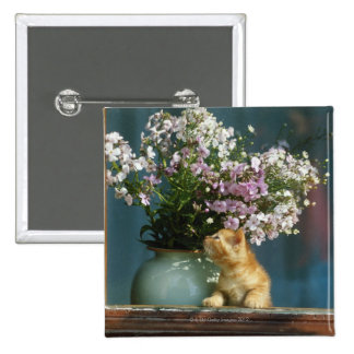 Cat sitting besides flower vase on window sill 2 inch square button