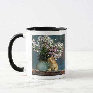 Cat sitting besides flower vase on window sill mug