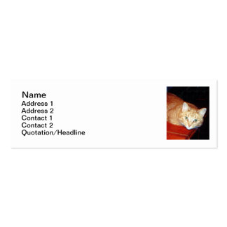 Cat Sitting Business Cards