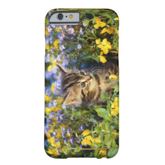 Cat sitting in flower garden barely there iPhone 6 case