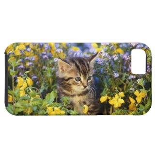 Cat sitting in flower garden iPhone SE/5/5s case