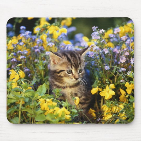 Cat sitting in flower garden mouse pad