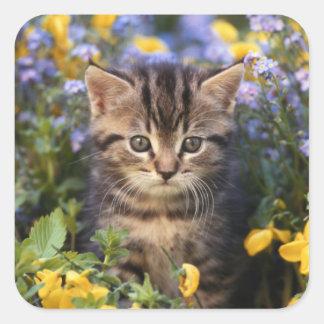 Cat Sitting In Flower Garden Square Sticker