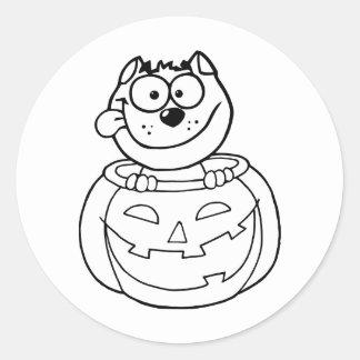 Cat Sitting Inside Pumpkin Classic Round Sticker