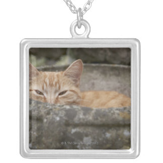 Cat sitting inside urn square pendant necklace