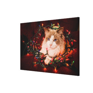 Cat sitting on a ball of Christmas lights. Canvas Print