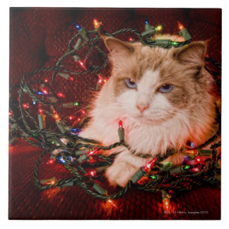 Cat sitting on a ball of Christmas lights Ceramic Tile