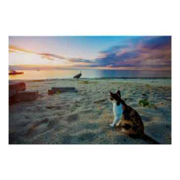 Beach Themed Cat Sitting On A Beach Poster