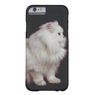 Cat sitting on black background, close-up barely there iPhone 6 case